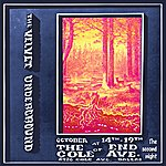 The Velvet Underground Live At The End Of Cole Avenue - The Second Night (Remastered) [Live]