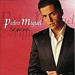 Pedro Miguel Sei Que Vais...