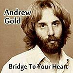 Andrew Gold Bridge To Your Heart