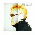 Bob Holroyd Without Within
