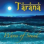 Tarana Waves Of Sound