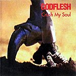 Godflesh Crush My Soul