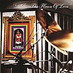 The House Of Love Babe Rainbow