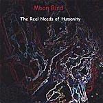Moon Bird The Real Needs Of Humanity