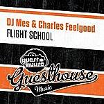 DJ Mes Fligh School