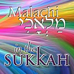 Malachi In The Sukkah