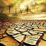 Livio I Wonder