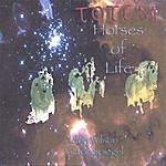 Totem Horses Of Life