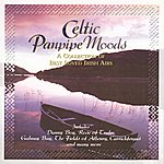 The Celtic Orchestra Celtic Panpipe Moods