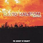 David Ralston The Lucidity Of Insanity