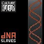Culture Kultür Dna Slaves