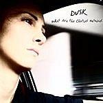 Dusk What Are The Chances Remixes