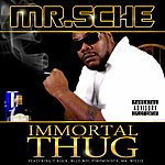 Mr. Sche Immortal Thug