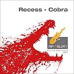 Recess Cobra