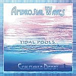 Constance Demby Ambrosial Waves / Tidal Pools