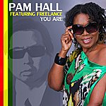 Pam Hall You Are (Feat. Freelance)