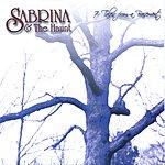 Sabrina 7 Tales From A Basement
