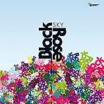 Black Rose Sky (Feat. Luisa Gerstein)