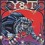Y&T Black Tiger