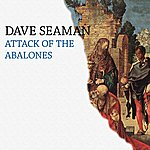 Dave Seaman Attack Of The Abalones