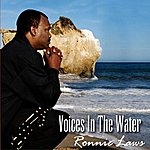 Ronnie Laws Voices In The Water