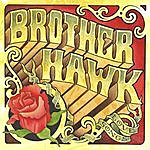 Brother Hawk Love Songs