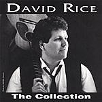 David Rice The Collection
