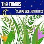 The Tokens Lion Sleeps