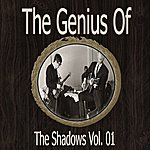 The Shadows The Genius Of The Shadows Vol 1