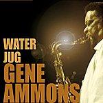 Gene Ammons Water Jug