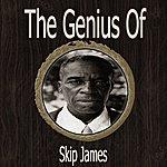 Skip James The Genius Of Skip James