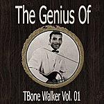T-Bone Walker The Genius Of Tbone Walker Vol 01
