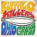 Buffalo Killers Ohio Grass