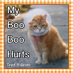 Fred My Boo Boo Hurts