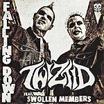 Twiztid Falling Down (Feat. Swollen Members)