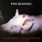 The Damned Strawberries