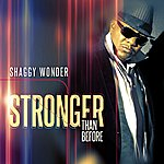Shaggy Wonder Stronger Than Before - Single