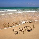 Sandy Roxanne