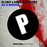 DJ Skip Do U Wanna...
