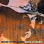David McWilliams Days At Dawn