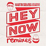Martin Solveig Hey Now Ep (Feat. Kyle)