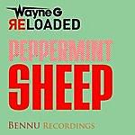 Wayne G Peppermint Sheep