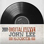 John Lee Hooker Digital Vinyl