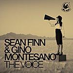 Sean Finn The Voice