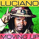 Luciano Moving Up