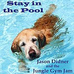 Jason Didner Stay In The Pool