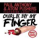Paul Anthony Charlie Bit My Finger (Original Mix)