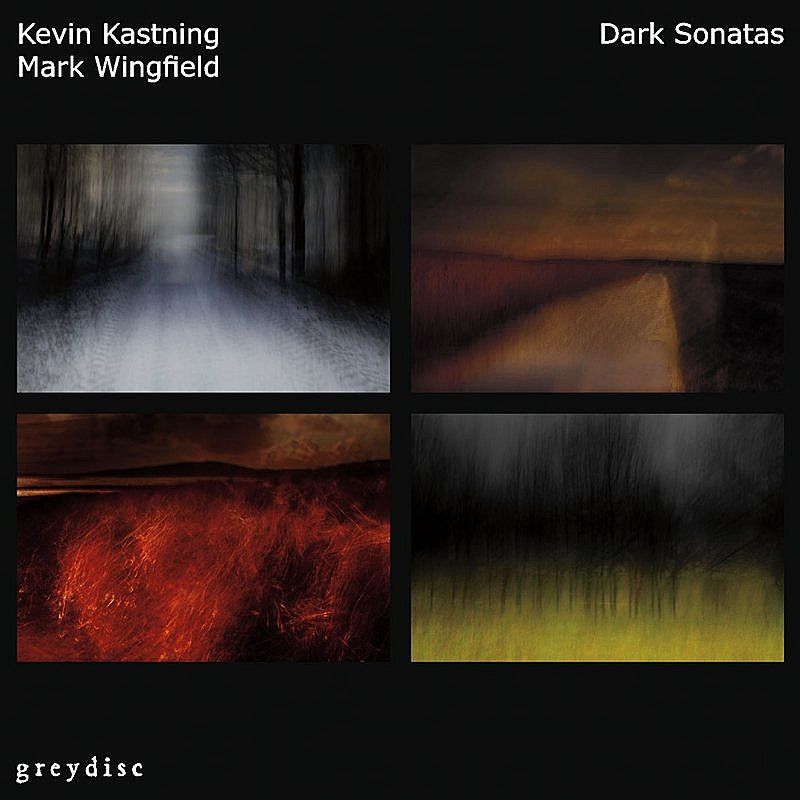 Cover Art: Dark Sonatas