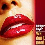 Rüdiger Bayer We Don't Need