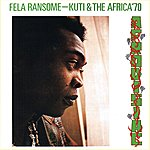 Fela Kuti Afrodisiac